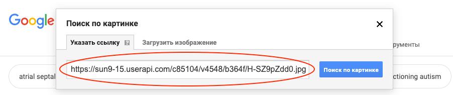Вводим адрес изображения в Google Images